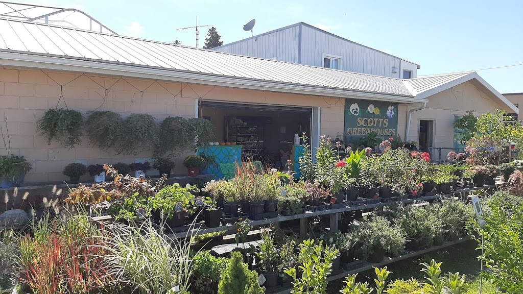 Scotts, J & D Greenhouses | point of interest | 160 Huron Rd, Mitchell, ON N0K 1N0, Canada | 5193488343 OR +1 519-348-8343