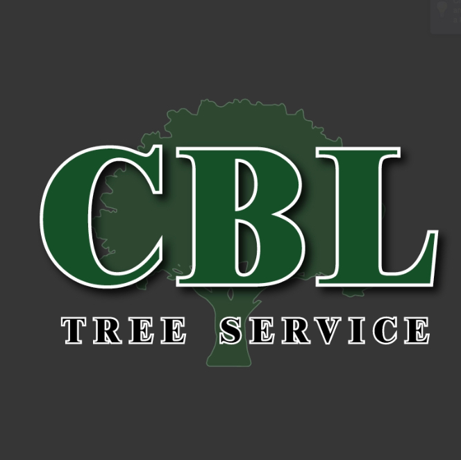 CBL Tree Service | point of interest | 4 Delverton Pl, Toronto, ON M2J 1Y6, Canada | 4162265654 OR +1 416-226-5654