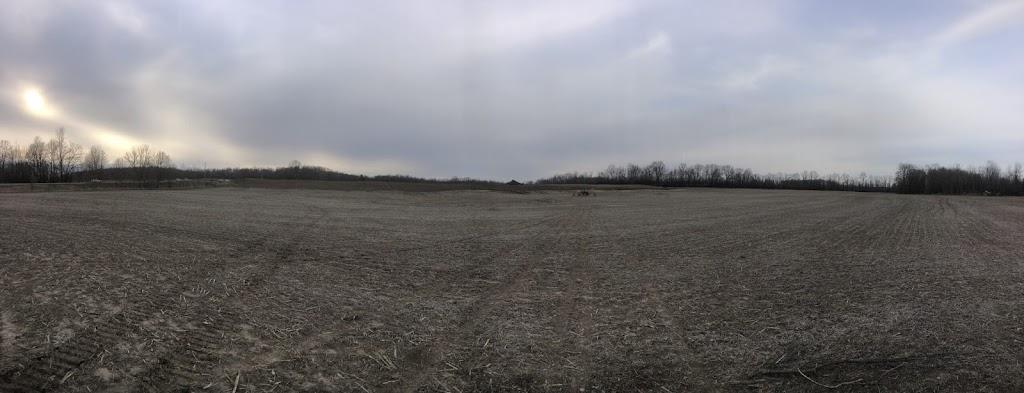 M Riddle Excavating Ltd | point of interest | 1321 John F. Scott Rd, Kingston, ON K7L 4V3, Canada | 6135614677 OR +1 613-561-4677
