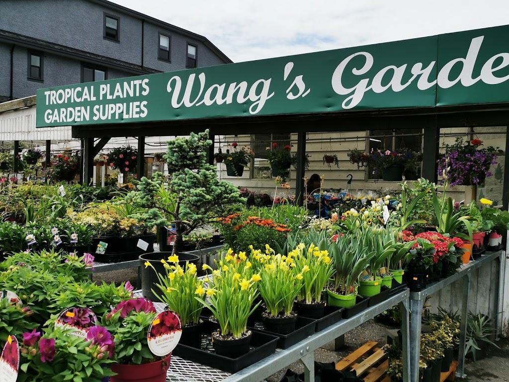 WANGS GARDEN CENTRE | store | 8451 No 5 Rd, Richmond, BC V6Y 2V5, Canada | 6042770871 OR +1 604-277-0871