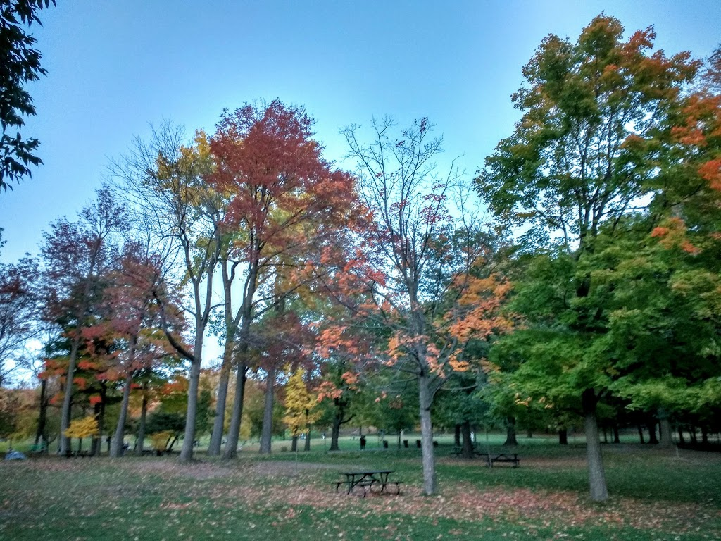 Queen Elizabeth Gardens | park | 4333 Rue Sherbrooke Ouest, Montréal, QC H3G 1E2, Canada | 6048748336 OR +1 604-874-8336