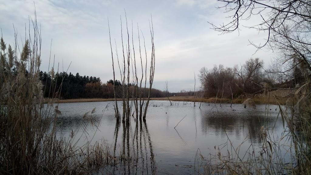 Goodman Park | park | 640 Bond St W, Oshawa, ON L1J 8G9, Canada | 9054363311 OR +1 905-436-3311
