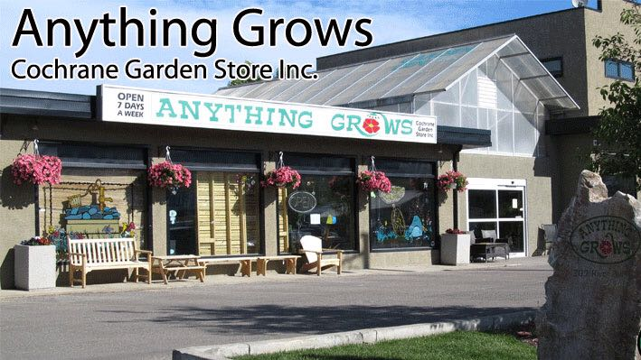 Anything Grows | store | 209 River Ave, Cochrane, AB T4C 2C1, Canada | 4039329922 OR +1 403-932-9922