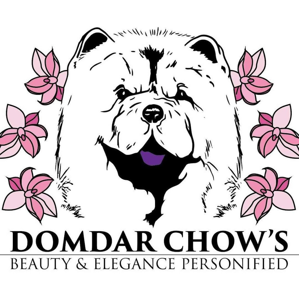 DOMDAR CHOWS | point of interest | Six Nations, Ohsweken, ON N0A 1M0, Canada | 5197747164 OR +1 519-774-7164