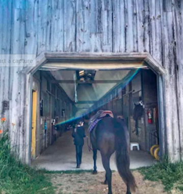Greenfields Stables West   point of interest   Township Rd 11, Bright, ON N0J 1G0, Canada   5197169600 OR +1 519-716-9600