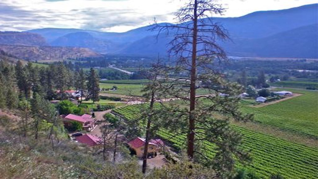 rama ridge guest/vacation house | lodging | 475 Pinehill Road, Oliver, BC V0H 1T7, Canada | 6048327150 OR +1 604-832-7150