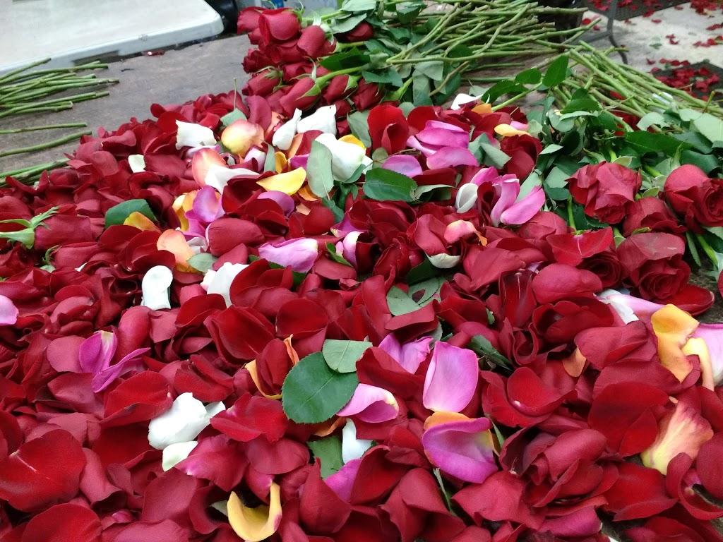 Fleurs Coupes Quebec Inc | florist | 675 Avenue Godin, Québec, QC G1M 3E6, Canada | 5817416561 OR +1 581-741-6561