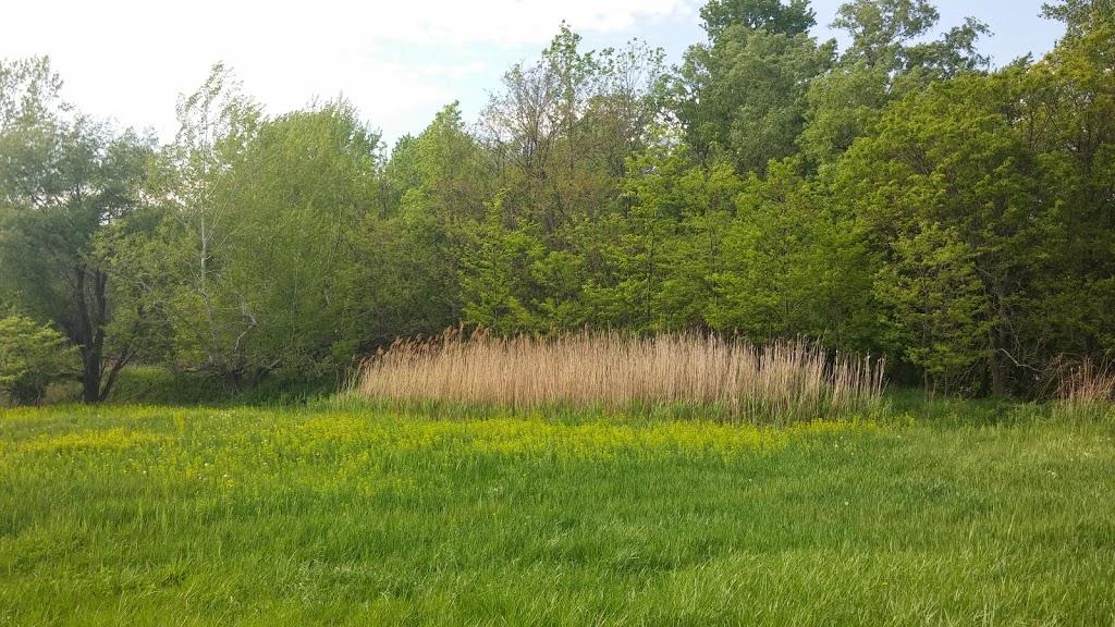 Billy Wilson Park | park | 1290 Hopkins Rd, Williamsville, NY 14221, USA | 7166317132 OR +1 716-631-7132