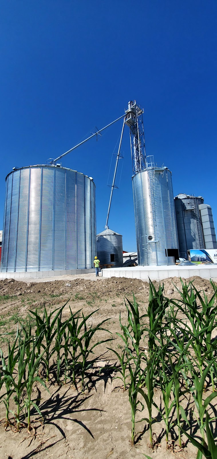 Durnin Farms Ltd.   point of interest   83472 Prosperity Line, Auburn, ON N0M 1E0, Canada   5195293294 OR +1 519-529-3294