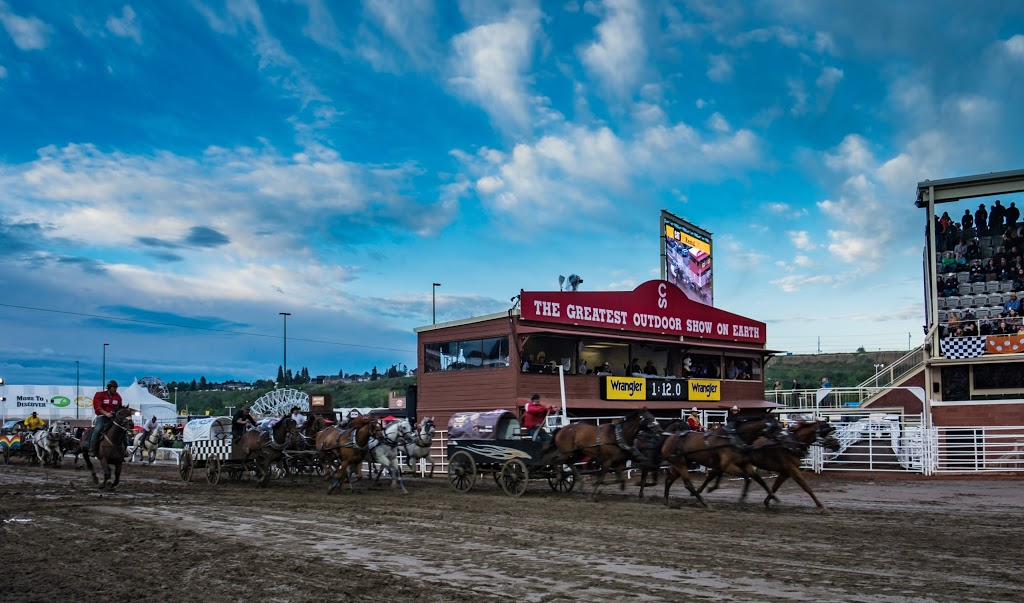 Stampede Grandstand | stadium | 3 St SE, Calgary, AB T2G 5A2, Canada | 4032657197 OR +1 403-265-7197
