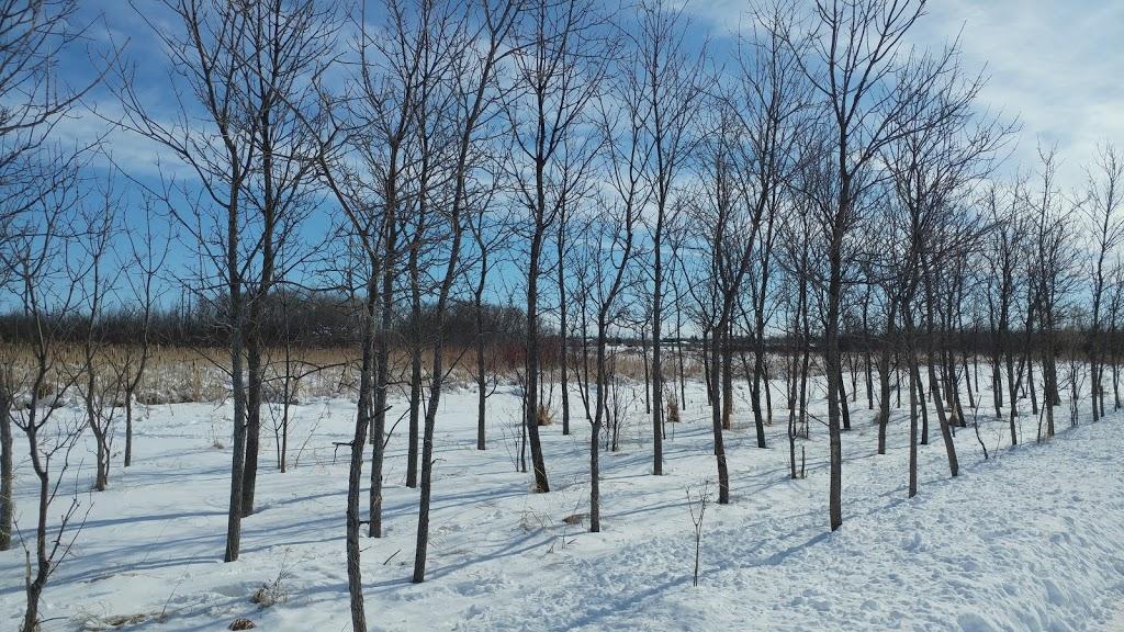 Transcona Bioreserve | park | Winnipeg, MB R2C 2X5, Canada | 2049864966 OR +1 204-986-4966