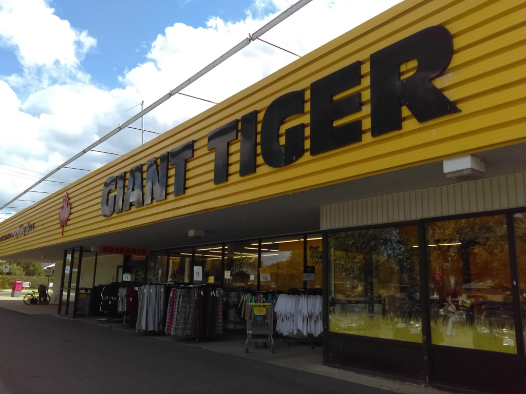 Giant Tiger | clothing store | 351 Margaret Ave, Kitchener, ON N2H 4J6, Canada | 5197429545 OR +1 519-742-9545
