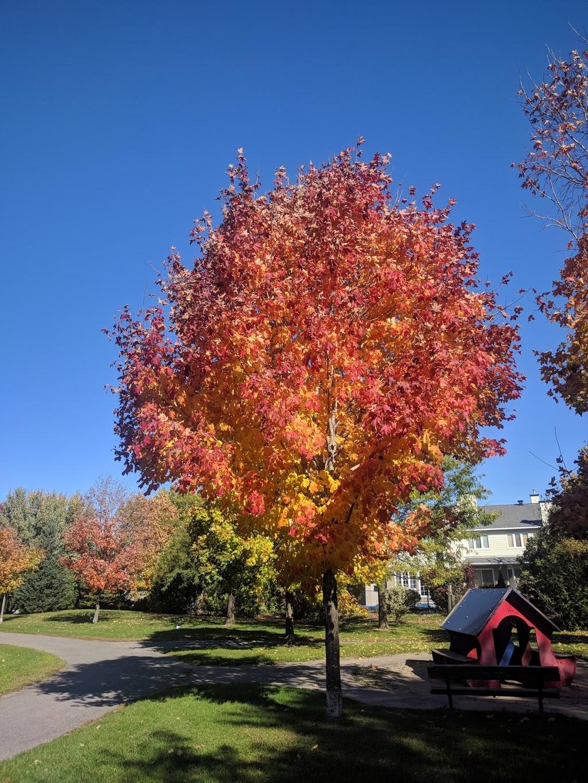 Greenboro Park | park | Ottawa, ON K1T, Canada | 6135802595 OR +1 613-580-2595