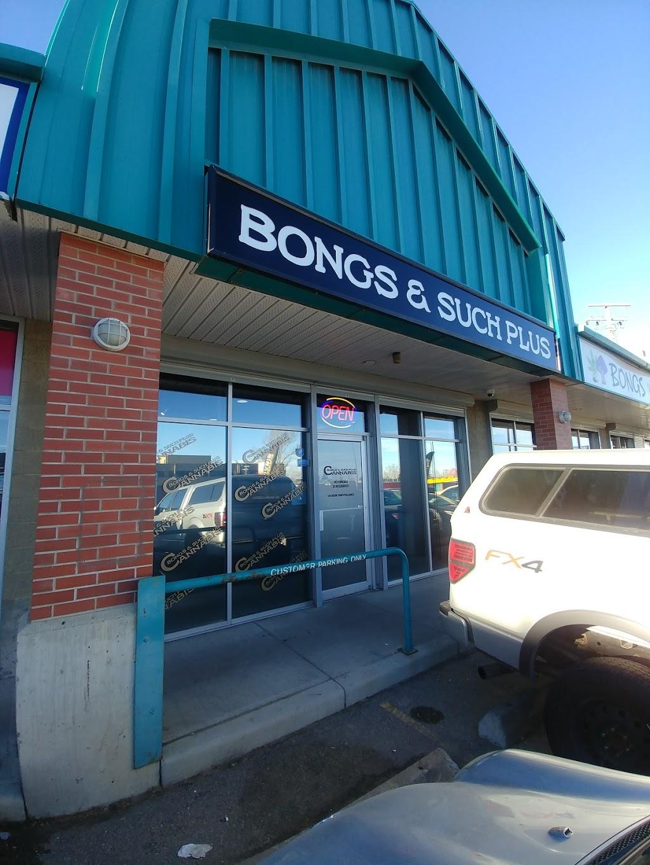 Bongs & Such Plus | store | 4825 Macleod Trail SW, Calgary, AB T2G 0A7, Canada