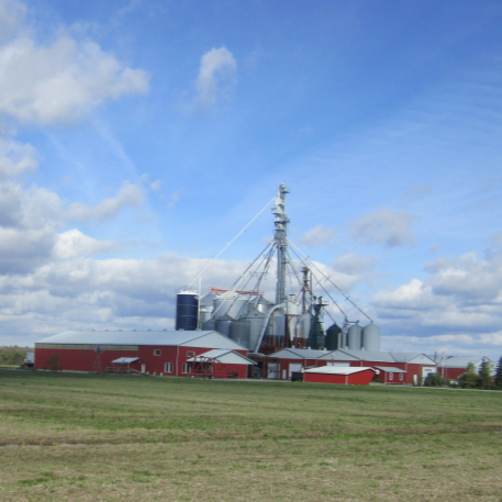 Andy Veenstra Farms | store | 4238 Second Concession Rd, Sherkston, ON L0S 1R0, Canada | 9054012817 OR +1 905-401-2817