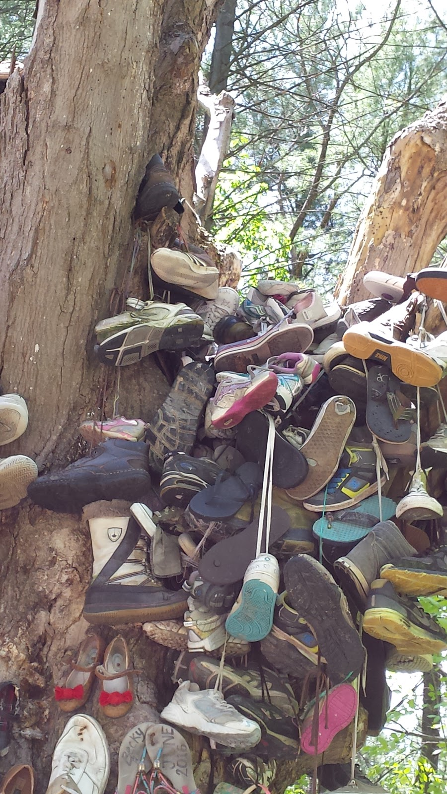 Famous shoe tree   museum   1544 Crossland Rd, Minesing, ON L0L 1Y0, Canada