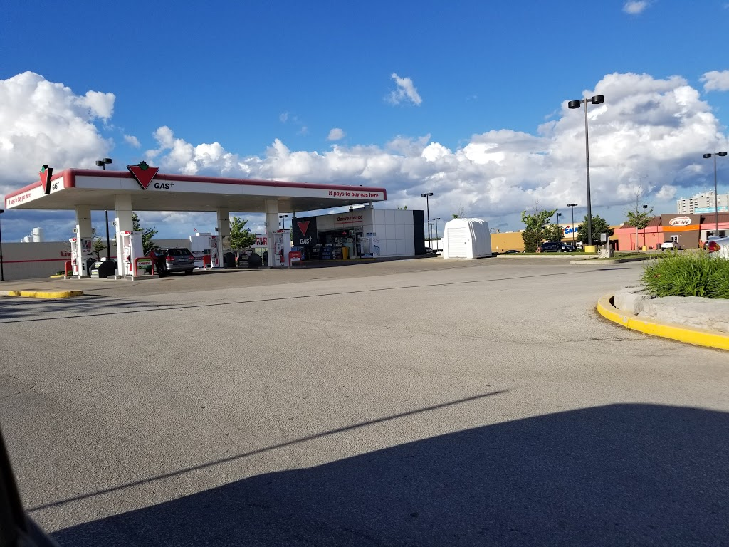 Canadian Tire Gas+ - Georgetown | car wash | 311 Guelph St, Georgetown, ON L7G 4B3, Canada | 9058737498 OR +1 905-873-7498