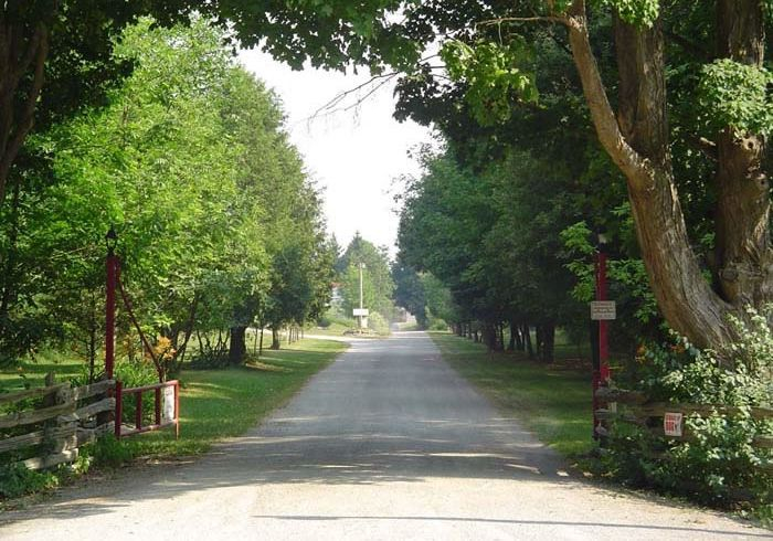 Maple Grove Resort | campground | 1488 Gore Rd, Puslinch, ON N0B 2J0, Canada | 9056593311 OR +1 905-659-3311
