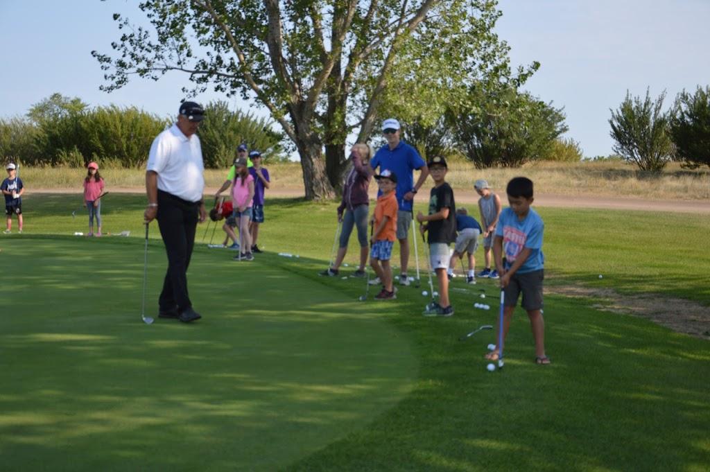 Regina Golf Lessons | Barry Eisenzimmer | health | 3805 Grassick Ave, Regina, SK S4S 0Z3, Canada | 3065334803 OR +1 306-533-4803