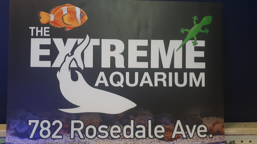 The Extreme Aquarium | pet store | 782 Rosedale Ave, Sarnia, ON N7V 2A1, Canada | 5193287226 OR +1 519-328-7226