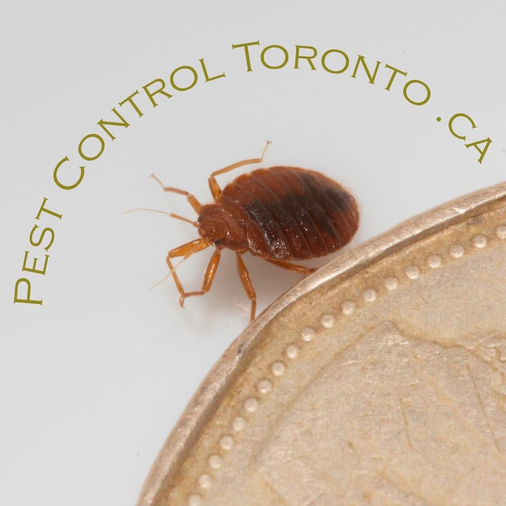 Pest Control Toronto .ca | home goods store | 639 Dupont St #504, Toronto, ON M6G 1Z4, Canada | 4163215060 OR +1 416-321-5060