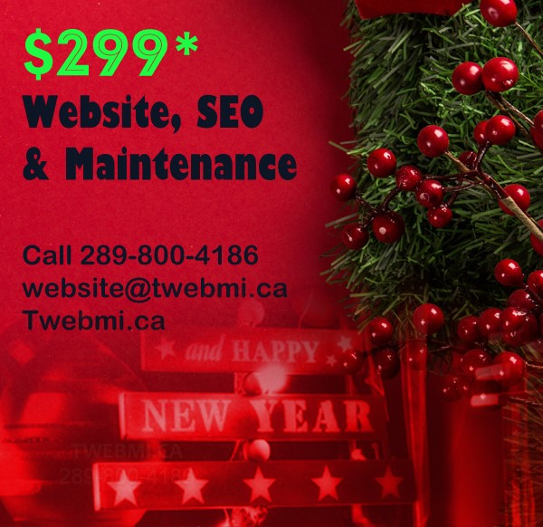 The Web Miracle | point of interest | 149 Heartview Rd, Brampton, ON L6Z 0G2, Canada | 2898004186 OR +1 289-800-4186