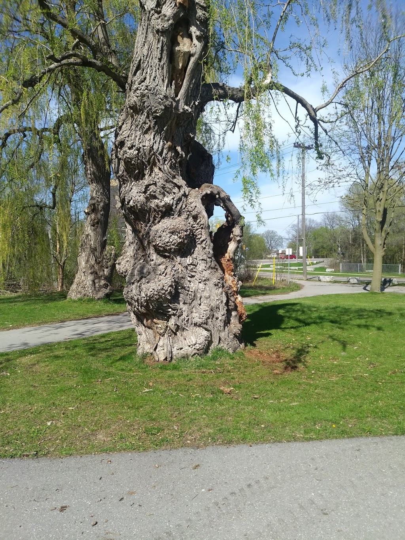 Meinzinger Park   park   Meinzinger State Park, Kitchener, ON N2M, Canada