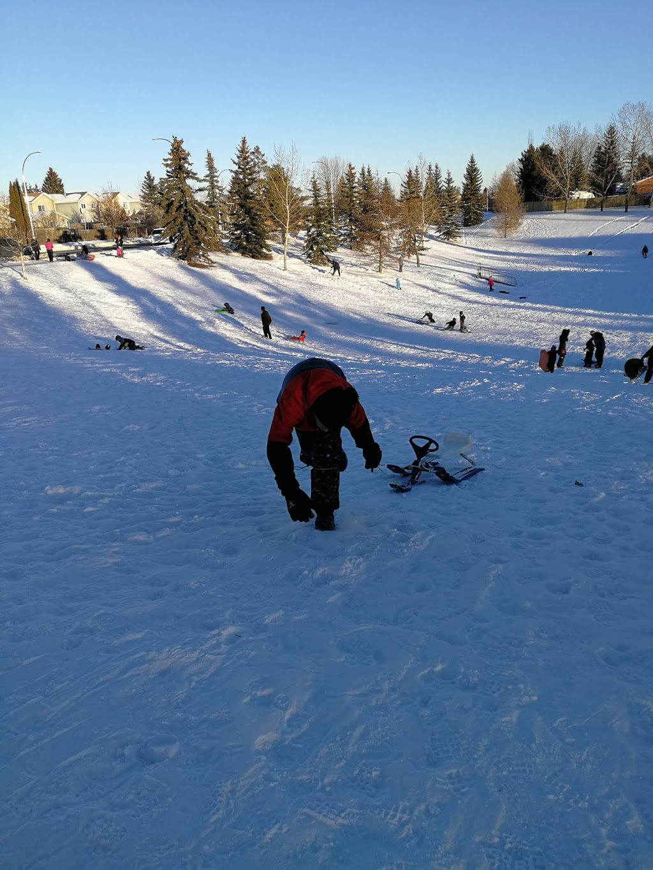 Parkwest Toboggan Bowl | park | 18725 95 Ave NW, Edmonton, AB T5T 1P7, Canada | 7804425311 OR +1 780-442-5311