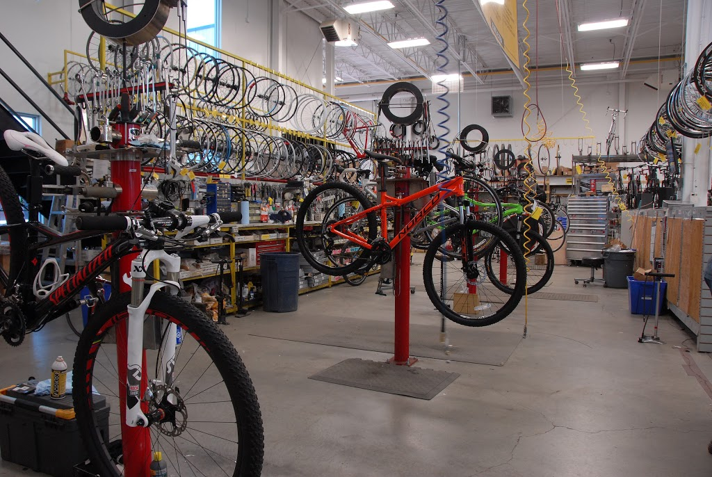 Bikeland | bicycle store | 75 Dyment Rd, Barrie, ON L4N 3H6, Canada | 7057267372 OR +1 705-726-7372