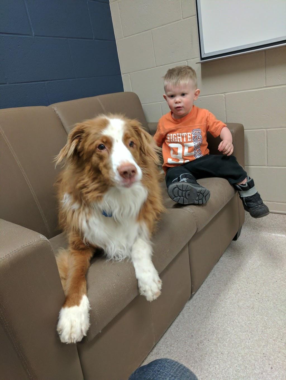 WCVM Small Animal Clinic (Veterinary Medical Centre) | veterinary care | 52 Campus Dr, Saskatoon, SK S7N 5B4, Canada | 3069667126 OR +1 306-966-7126