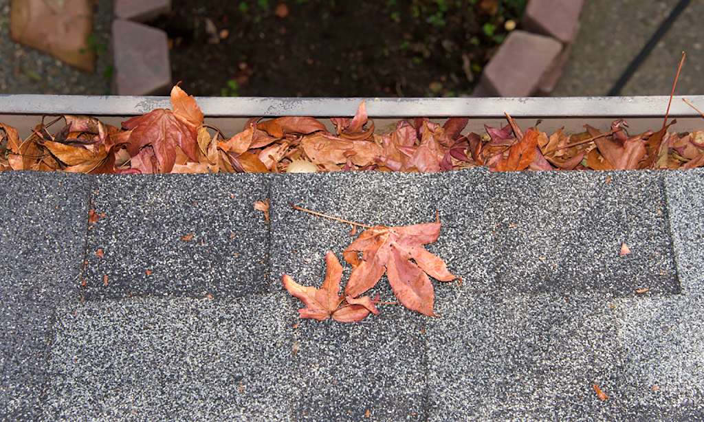 Toronto Roofers Things To Know Before You Buy