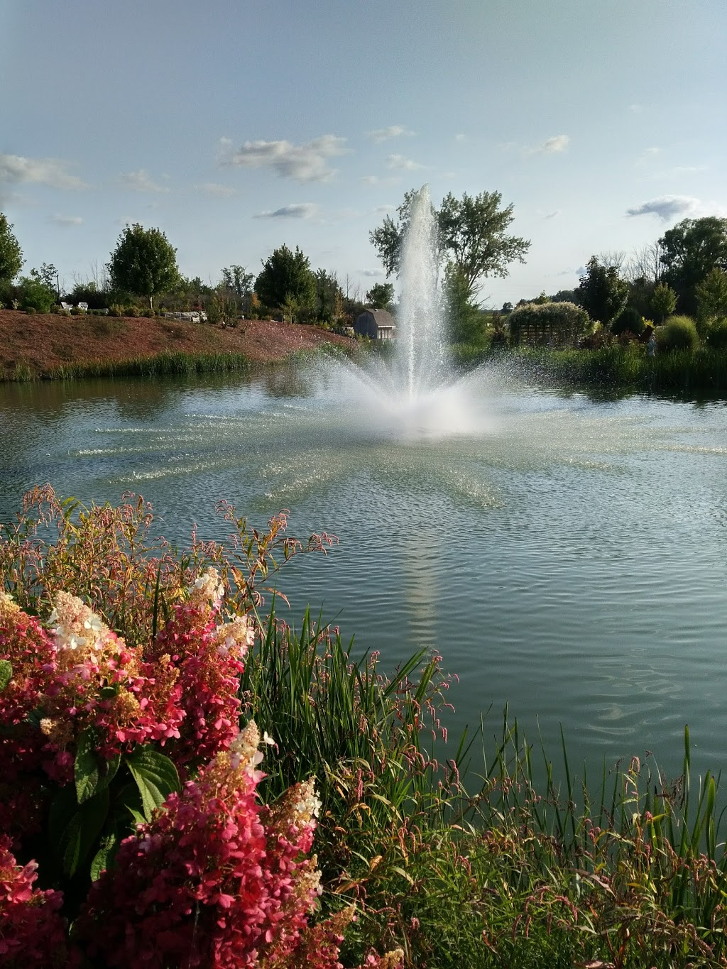 Greenhill Gardens, Wilksport Line | park | St. Clair Township, ON N0P 2H0, Canada