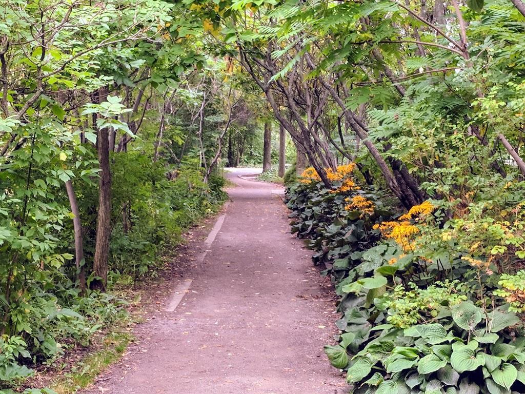 Dog Park Pointe-aux-Lievres   park   25 Rue de la Pointe-aux-Lièvres, Québec, QC G1K 2L1, Canada   4186416198 OR +1 418-641-6198