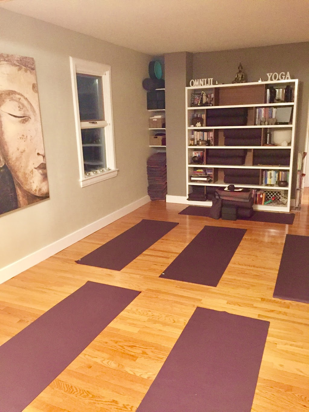 Omniji Yoga Therapy | gym | 129 Garfield St S, Winnipeg, MB R3G 2L7, Canada | 2049639642 OR +1 204-963-9642