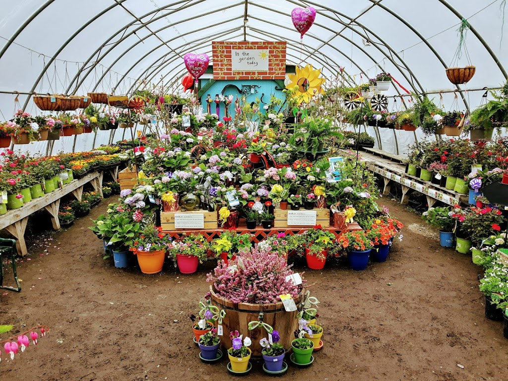 Withrows Farm Market | store | 1040 NS-214, Belnan, NS B2S 2P7, Canada | 9028832698 OR +1 902-883-2698