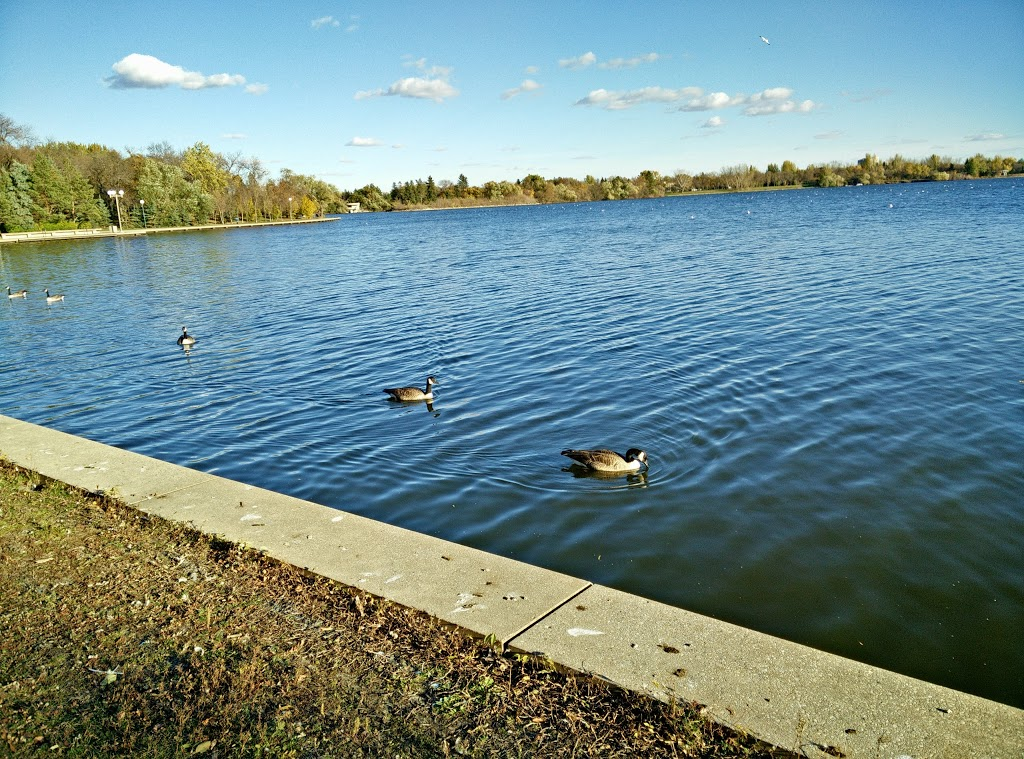 Wascana Waterfowl Park Display Ponds   park   Lakeshore Dr, Regina, SK S4S, Canada   3065223661 OR +1 306-522-3661