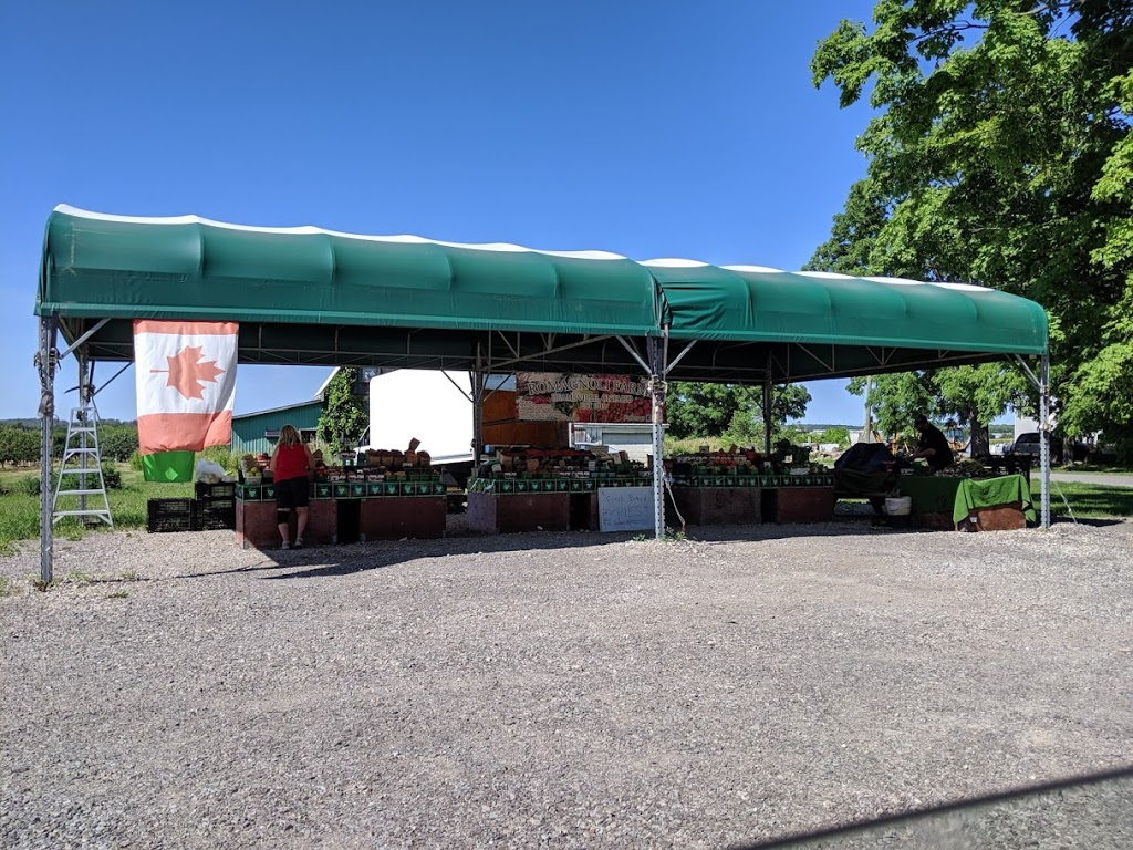 Romagnoli Farms Fruitstand | store | 4403 King St, Beamsville, ON L0R 1B1, Canada