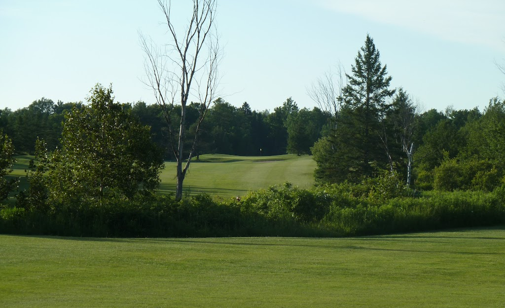 The Iron & The Eagle Golf & Country Club | point of interest | 553473 Mono Amaranth Townline, Mono, ON L9W 5M6, Canada | 5199419035 OR +1 519-941-9035