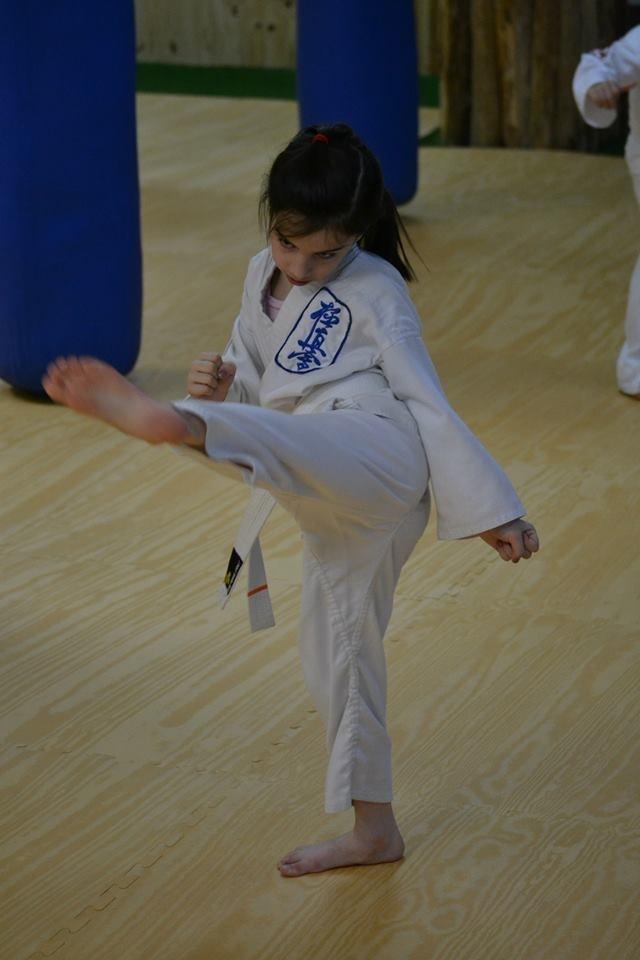 Alexandre Haché Kyokushin Karate Inc.   health   550 Chemin du Golf #107, Verdun, QC H3E 1A8, Canada   5144518730 OR +1 514-451-8730