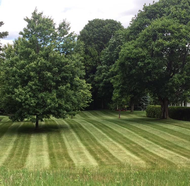 Lawnscape Property Maintenance | point of interest | Durham Regional Rd 8, Uxbridge, ON L9P 1R1, Canada | 9058524378 OR +1 905-852-4378