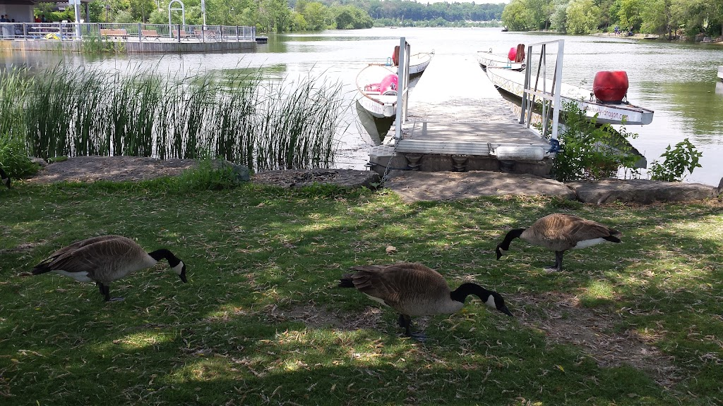 Boat launch ramp-Bayfront Park   point of interest   1C8,, Harbour Front Dr, Hamilton, ON L8L 1C8, Canada   9055462489 OR +1 905-546-2489