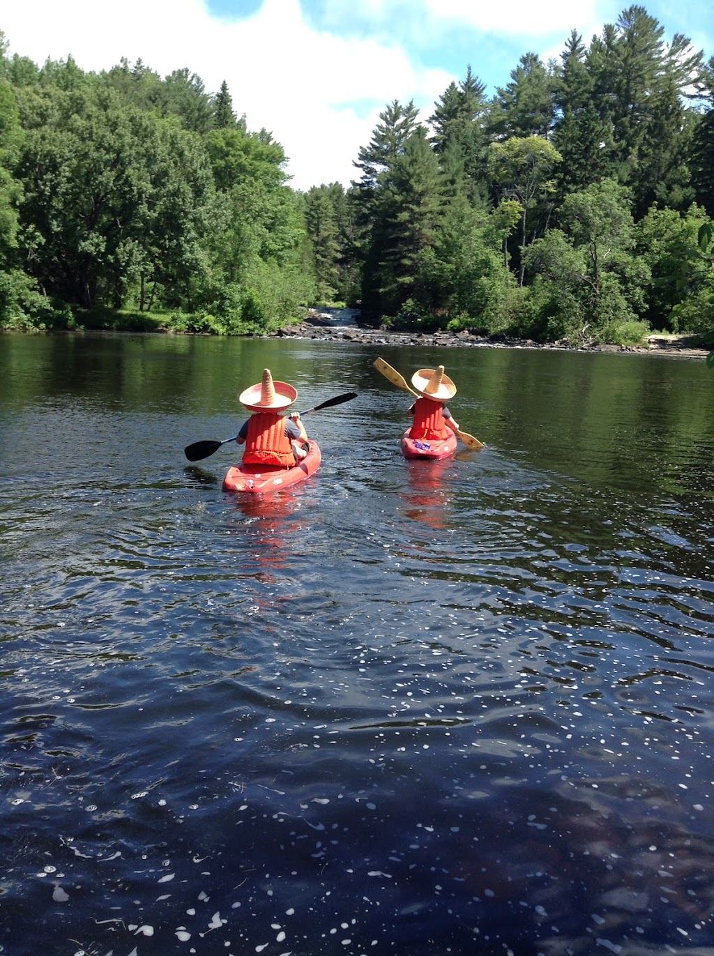 Irondale Tours | point of interest | 8121 Haliburton County Rd 503, Minden, ON K0M 2A1, Canada | 7054472637 OR +1 705-447-2637