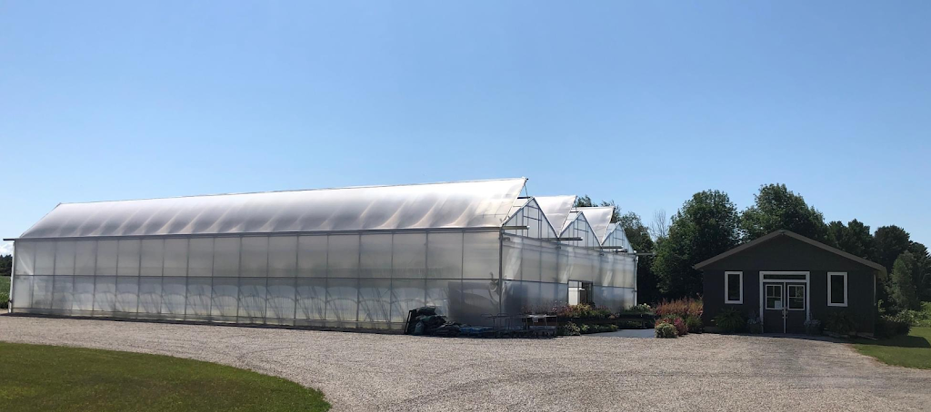 Birch Creek Greenhouse & Florals   store   33849 Church Camp Rd, Goderich, ON N7A 3Y3, Canada   5195246874 OR +1 519-524-6874