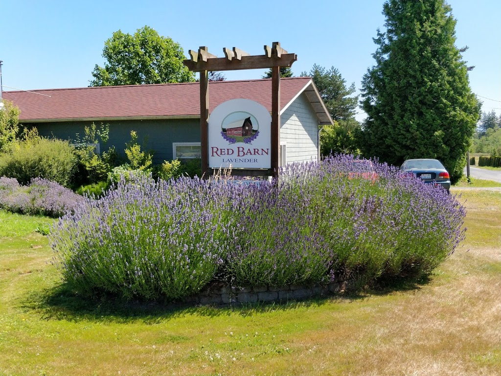 Red Barn Lavender   store   3106 Thornton Rd, Ferndale, WA 98248, USA   3603937057 OR +1 360-393-7057