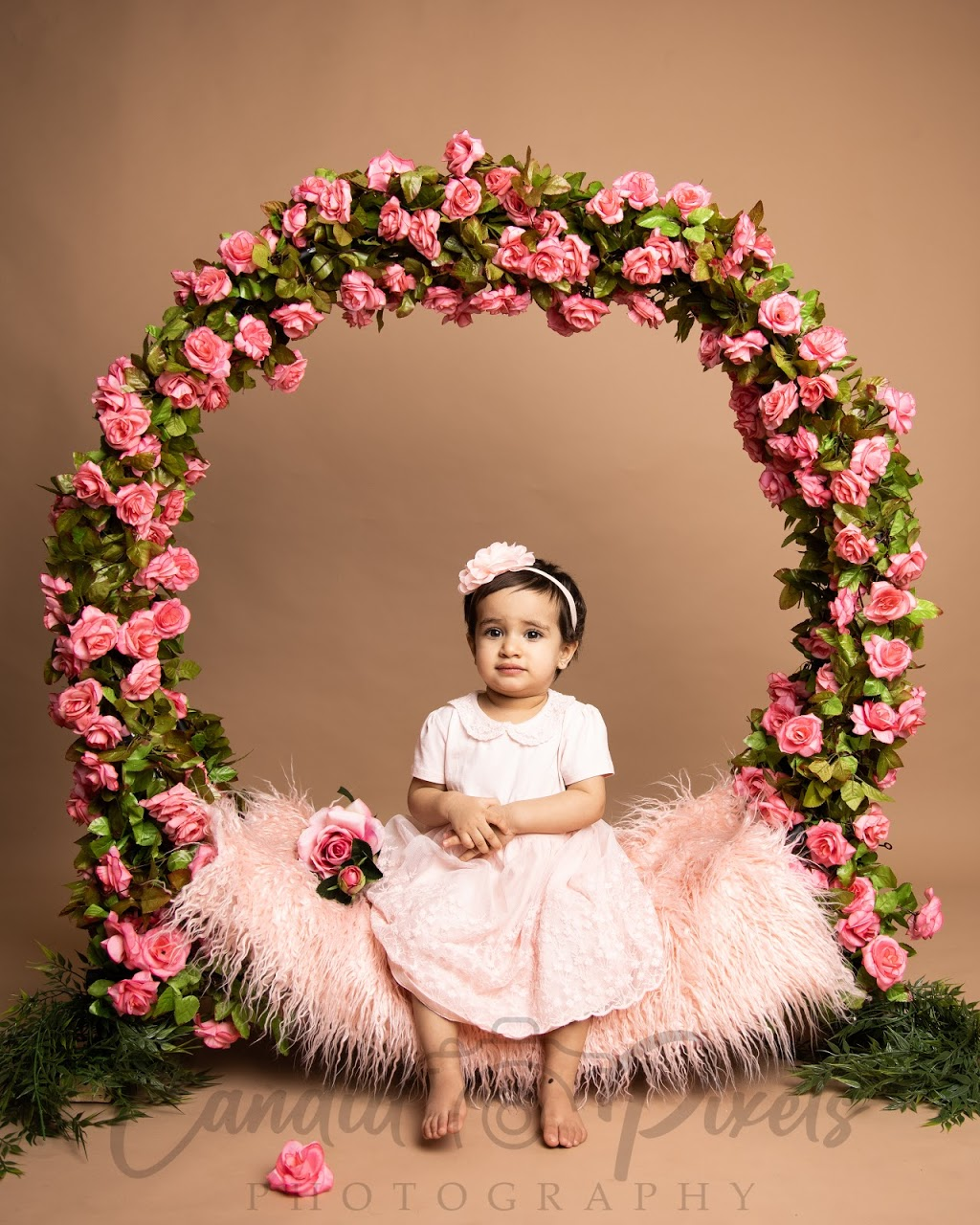 Candid Pixels Photography Studio | point of interest | Inspire Blvd, Brampton, ON L6R 3W6, Canada | 6479855701 OR +1 647-985-5701