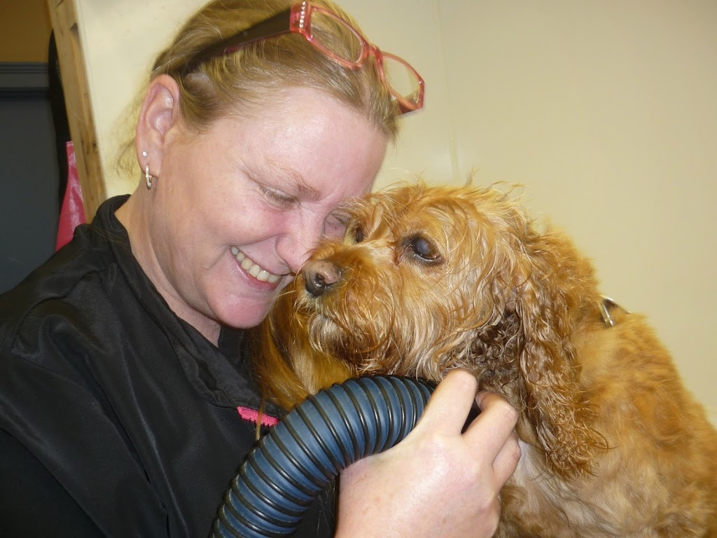 Cuddles And Clips   dentist   23 Hutchinson Rd R, Lowbanks, ON N0A 1K0, Canada   2892098323 OR +1 289-209-8323