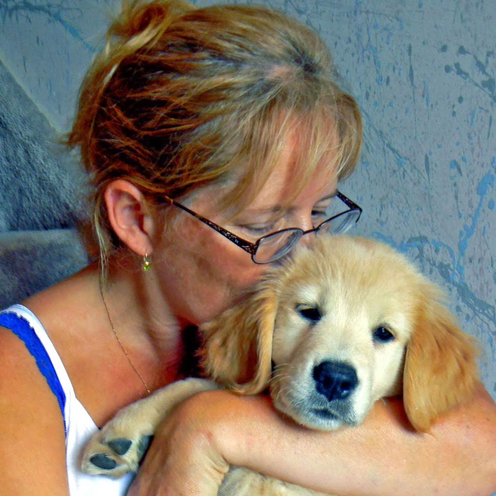A Pet Nanny Plus | store | Beatrice and Wilson, Oshawa, ON L1K 2C6, Canada | 9057259626 OR +1 905-725-9626