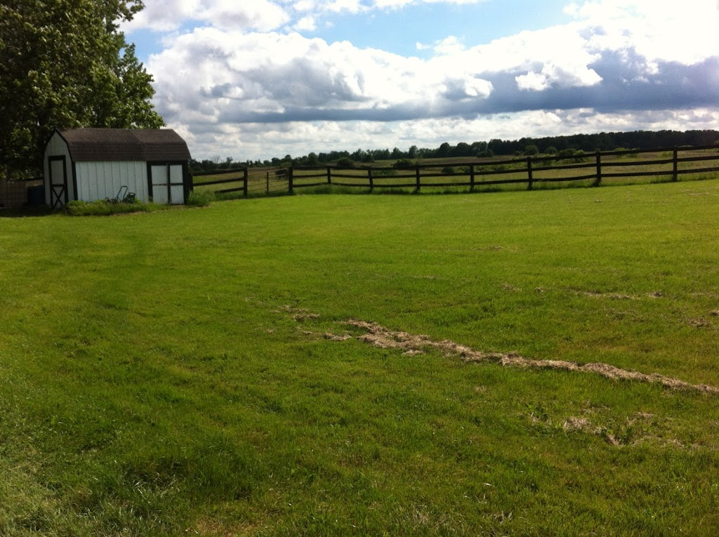 Norton Farms | point of interest | rd, 2687 County Line Unit 74, Hagersville, ON N0A 1H0, Canada | 5199006202 OR +1 519-900-6202