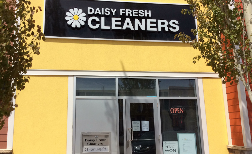 Daisy Fresh Cleaners Fine Dry Cleaning   laundry   19369 Sheriff King St #416, Calgary, AB T2X 0T9, Canada   4038737332 OR +1 403-873-7332
