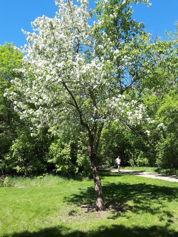 George F Hustler Memorial Plaza | park | 9803-, 9815 95 St, Edmonton, AB T6C 4P6, Canada